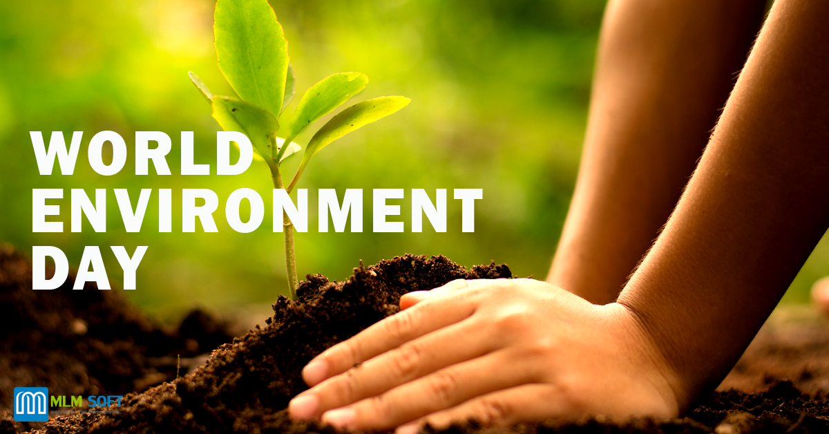 Why Celebrate World Environment Day?