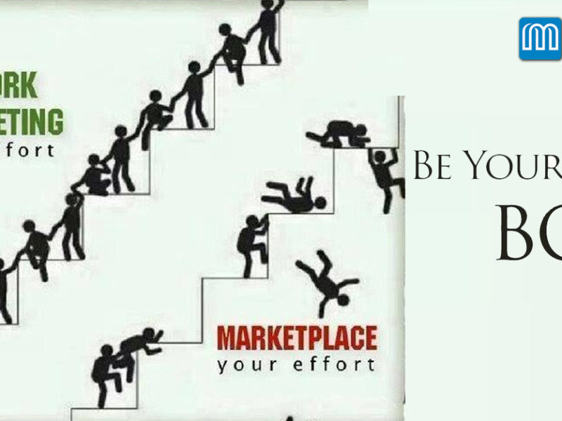 Network marketing and career opportunity